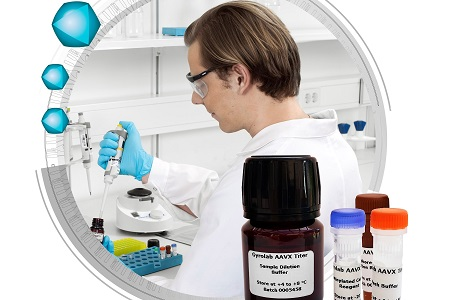 Ready-to-use kit for rapid AAV titre determination