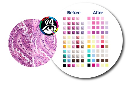 Colour validation tool for digital pathology scanning devices